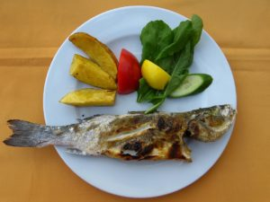 Fisch HIstamin